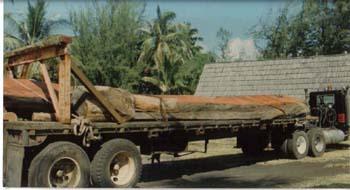 Koa Wood for Canoe pic 1.jpg