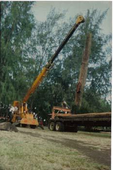 Koa Wood for Canoe pic 2.jpg