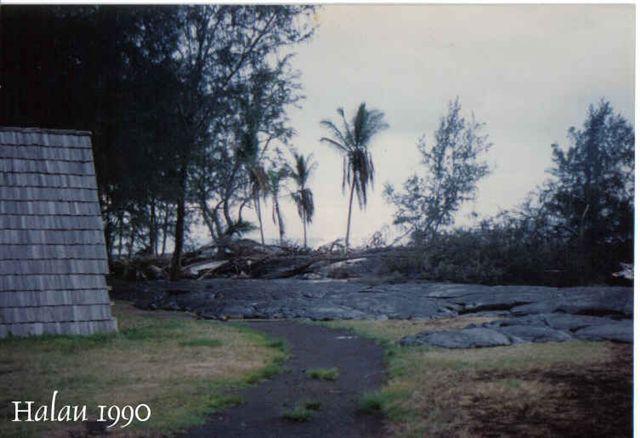 halau-1990